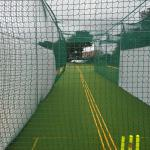 View through the nets!
